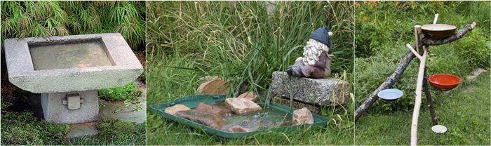 Bak mandi sekaligus sebagai tempat minum bagi burung liar di halaman
