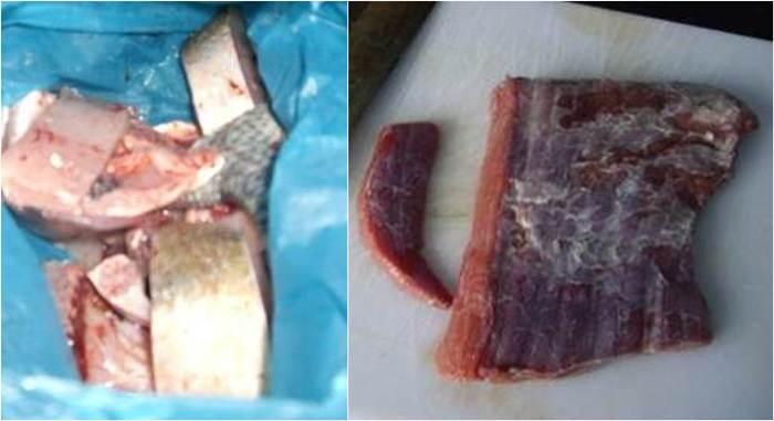Daging ikan dan daging sapi dihaluskan