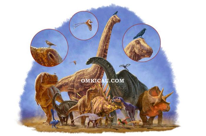 Dinosaurus menyusut menjadi burung
