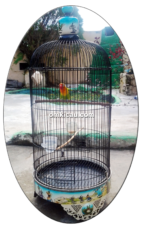 Lovebird Sukowati