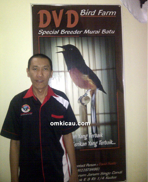 David Susilo - DVD BF