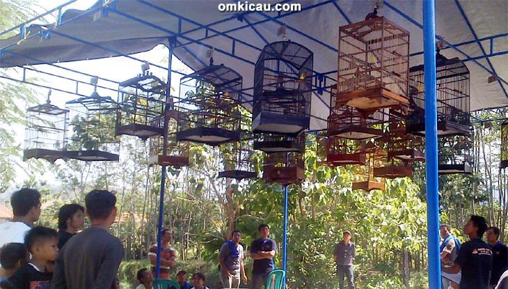Suasana Latber BBC Cirebon kelas kenari