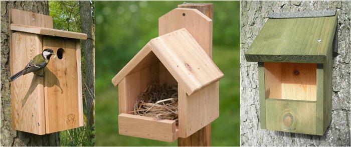 Tempat sarang untuk burung liar
