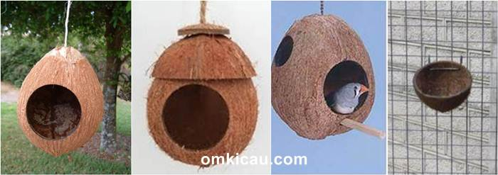 Tempat sarang dari tempurung kelapa