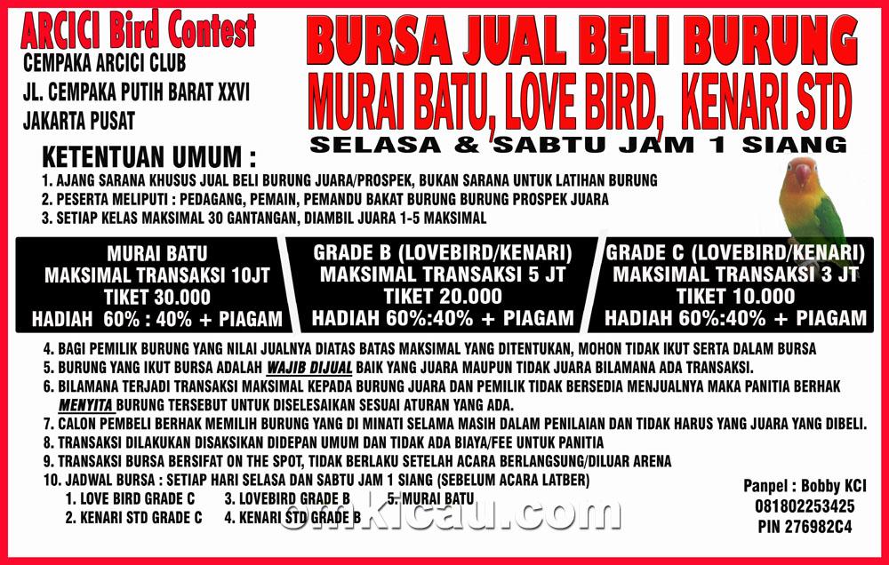 Bursa jual-beli burung on the spot Arcici Bird Contes