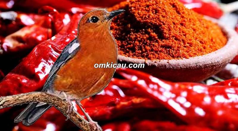 Anis merah macet bunyi