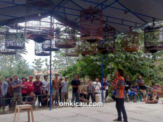 Kelas Murai Batu Bintang BBC Cirebon