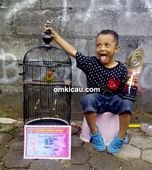 Fajar IM Junior dan lovebird Putri Istana