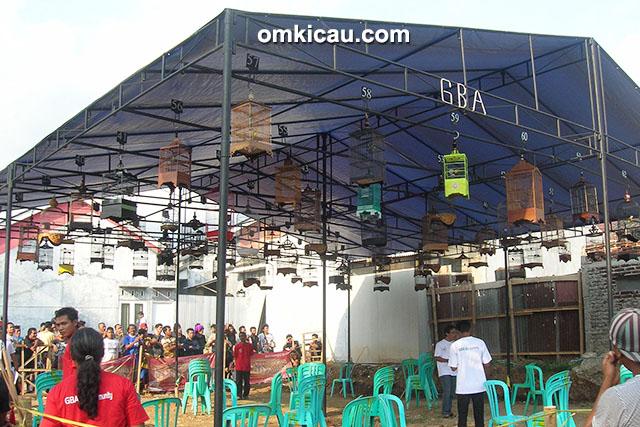 GBA Bird Community Banjarnegara - kelas pleci