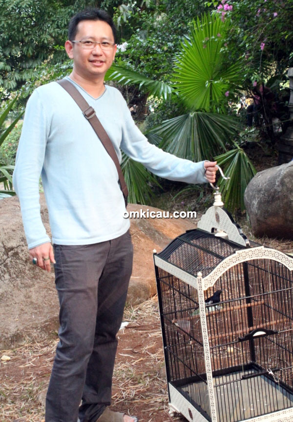 Om Willy breeding lovebird, murai dan kacer
