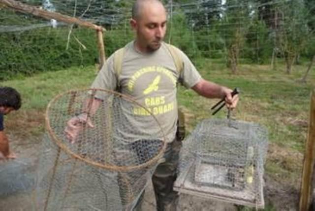 Relawan dari CABS menyita perlengkapan yang digunakan untuk menjebak burung ortolan