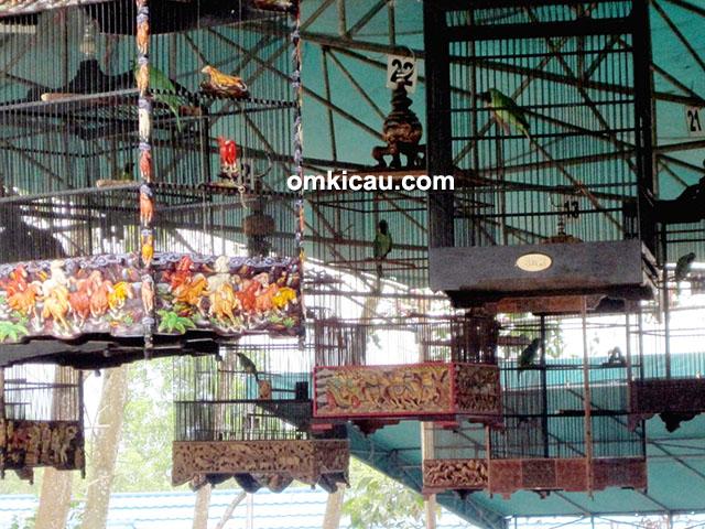 Lomba Burung HUT Polairud Balikpapan