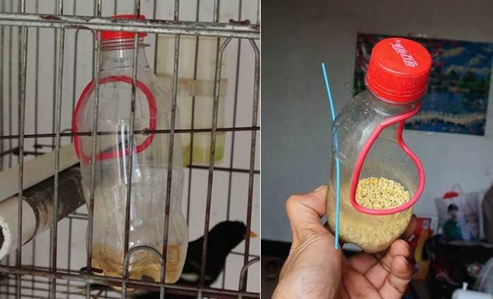 Bisa digunakan sebagai tempat pakan atau tempat minum burung