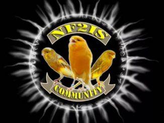 Logo NF2IS Community