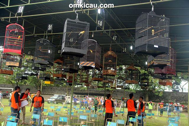 Lomba burung WMP Cup 2 Klaten