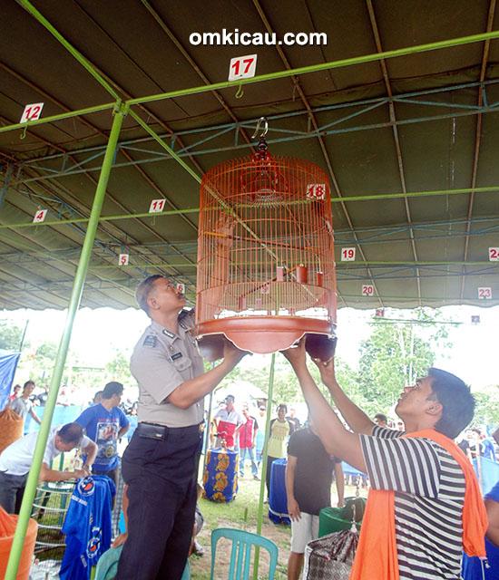 Lomba Burung KMRN-BC - Kapolsek Rambang Dangku melakukan penggantangan simbolis