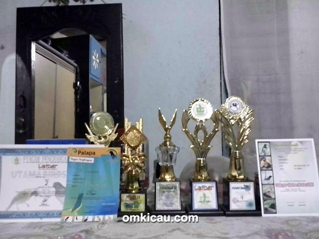 Trofi dan piagam kemenangan MB Unlimited
