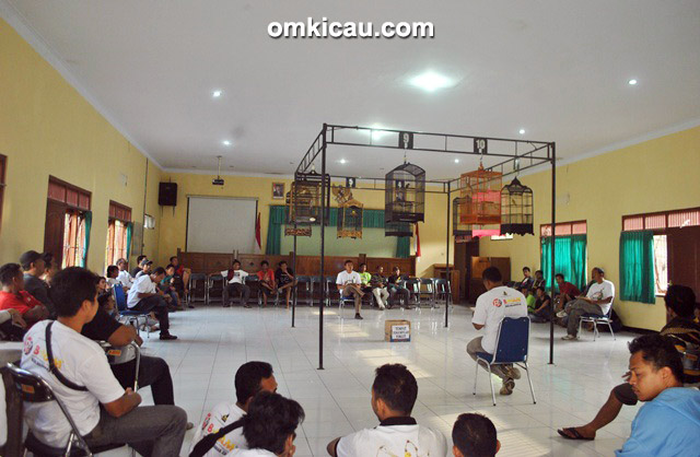 Kontes regular Papburi Klaten di kantor Dinas Pertanian Klaten, Minggu (22/2