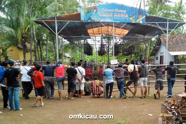 Arena Lomba Angsana Muda