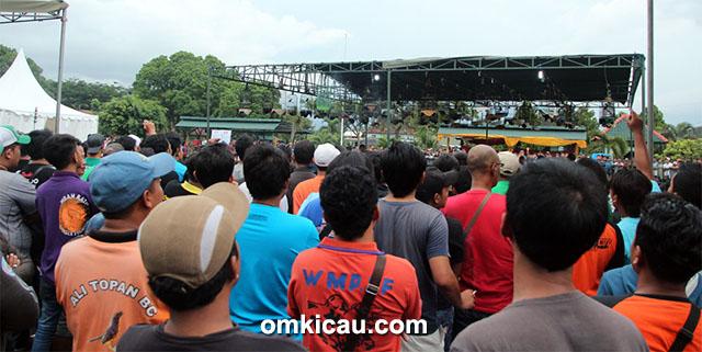 Arema Cup V Malang - Lovebird Kusumo