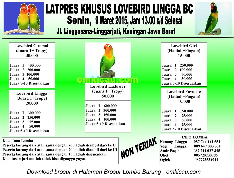 Brosur Latpres Khusus Lovebird Lingga BC, Kuningan, 9 Maret 2015