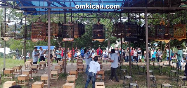 MM Mahameru Cup Balikpapan - kelas murai borneo