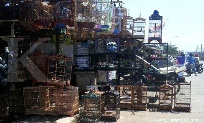 Kios burung di sekitaran Kayu Manis Jl Baru, Bogor