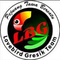 Logo LBG Team