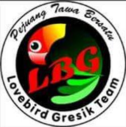 Logo LBG Team