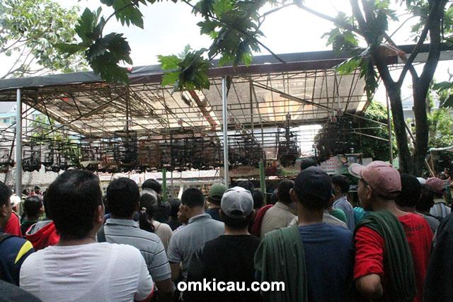 Lomba burung Taman Radja Cup III Jakarta
