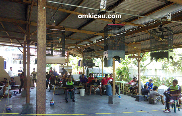 Kontes Papburi Pasuruan