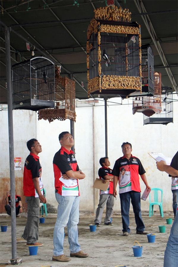 Kepahiang Cup III - kelas kacer