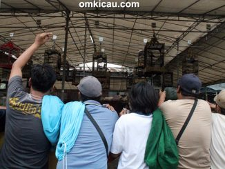 lomba burung berkicau KBN Jakarta