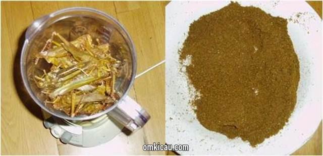 Membuat tepung belalang dengan menggunakan blender