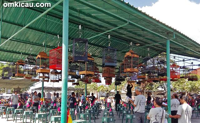 Lomba burung berkicau Ramadhan Cup Denpasar