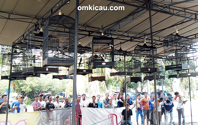 Latpres OIBC #11 Indralaya