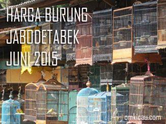 Harga burung Juni 2015