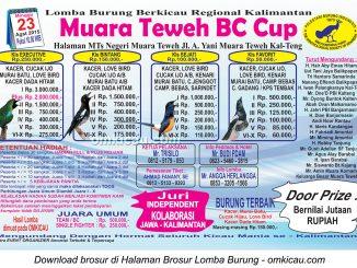 Brosur Lomba Burung Berkicau Muara Teweh BC Cup, Muara Teweh, 23 Agustus 2015