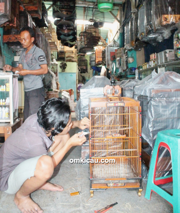 Kru Arif Sangkar melakukan penyetelan sangkar