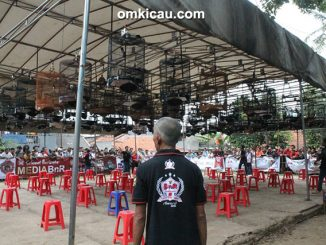 THR Cup HSBC Bekasi