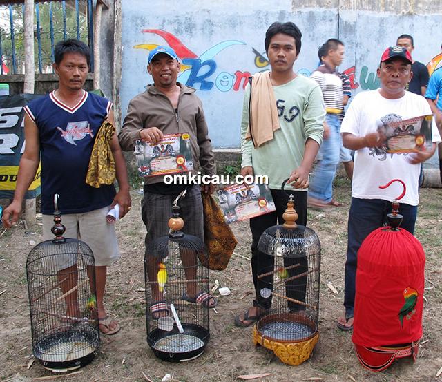 Babang Berdarah Jambi - juara 1-4 lovebird