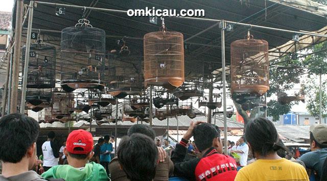 Latpres Matoa Enterprise Jakarta
