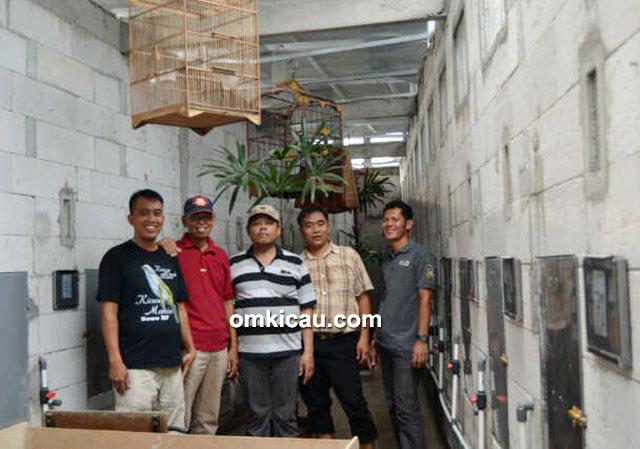breeding murai batu Bowo BF Citeurep, Bogor