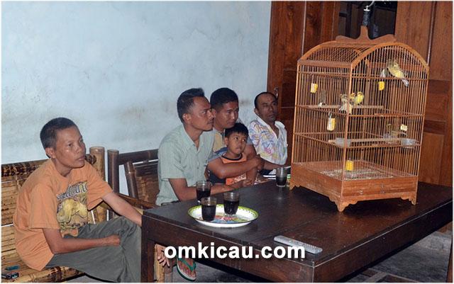 Om Aji Waluyo, breeder kenari trah jawara