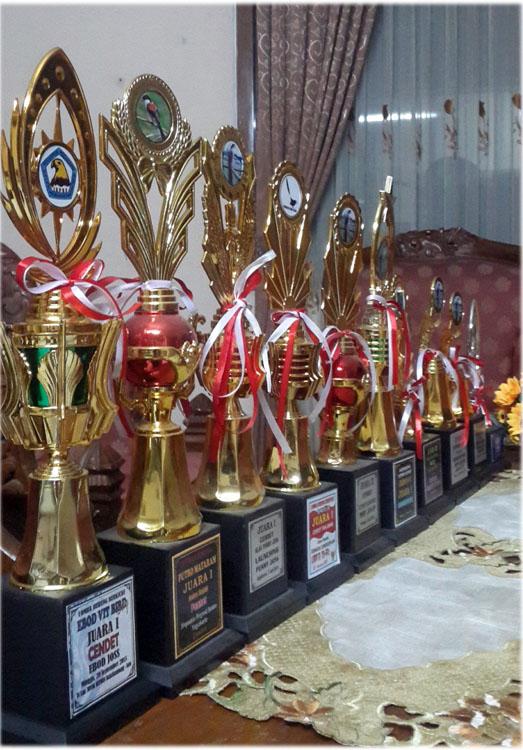 Sederet trofi kemenangan cendet Samsung