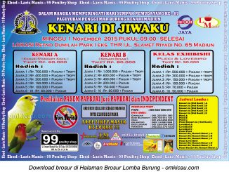 Brosur Lomba Burung Kenari di Jiwaku - Papburi Madiun, 1 November 2015