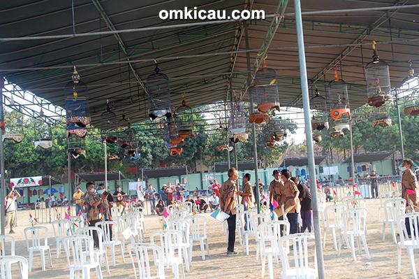 Jatayu Cup I Denpasar - kelas lovebird