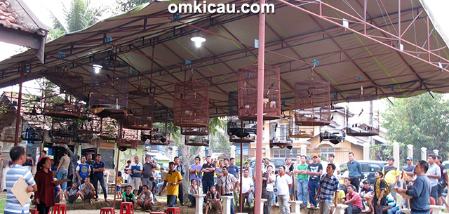 Suasana Latihan Spesial Sakti Bird Jambi