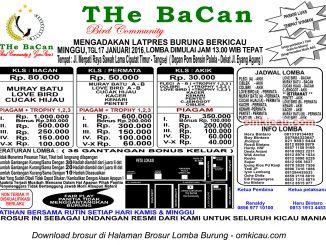 Brosur Latpres Burung Berkicau The Bacan, Tangerang Selatan, 17 Januari 2016