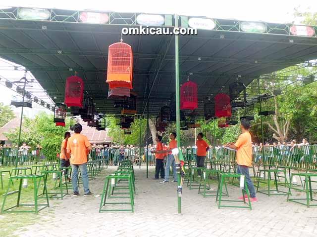 Lomba burung 1st Anniversary MJB Jombang
